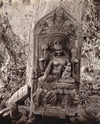Statue of female deity, with inscription on pedestal, Hasanpur, Monghyr (Munger) District